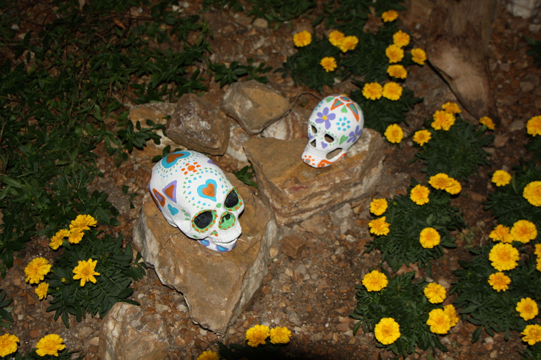 Milwaukee County Domes Day of the Dead